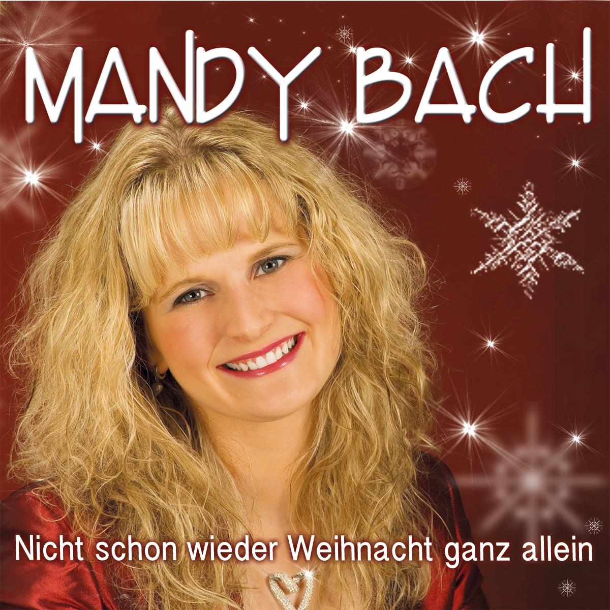 nicht_schon_wieder_weihnachten_cover